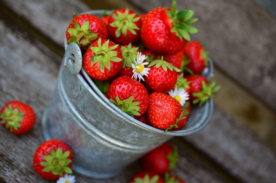 strawberries, fruit, delicious-3431122.jpg